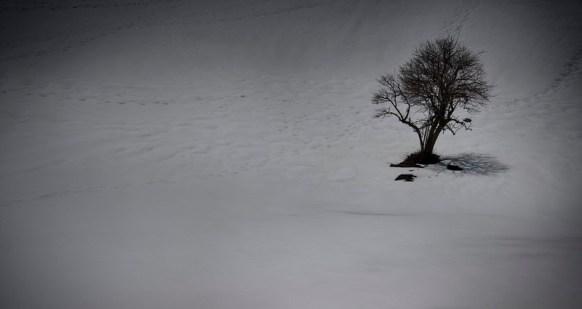 nieve3.jpg