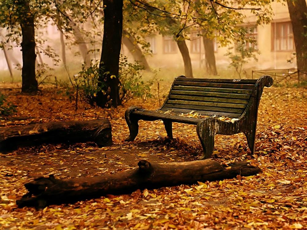 viejo_banco_en_el_parque-1600x1200-364349